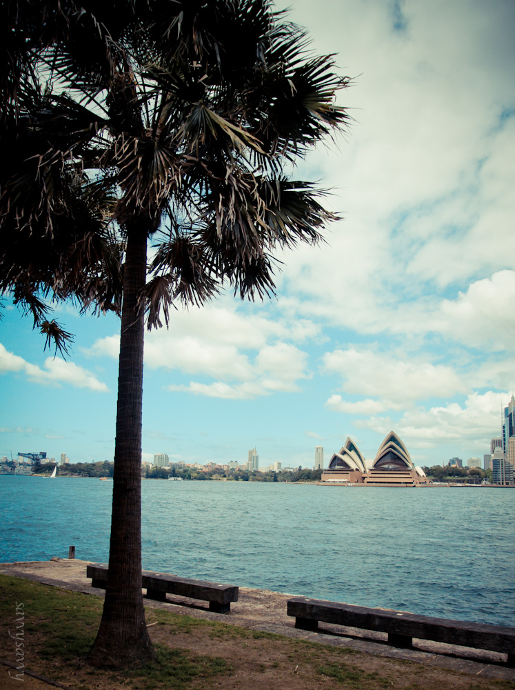 sydneyinspiration-6